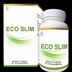 Eco Slim (ID)