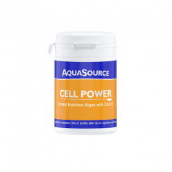 Cell Power (RO)