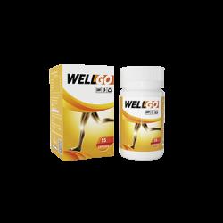 Wellgo (VN)